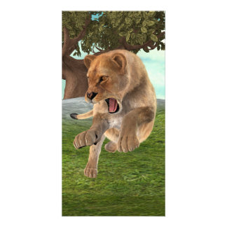 Hunting Lioness Card