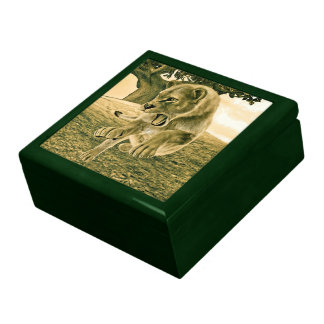 Hunting Lioness Gift Boxes