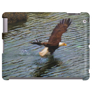 Hunting Mature Bald Eagle Wildlife Art