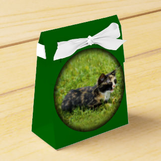 Hunting Wedding Favor Boxes