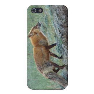 Hunting Yukon Red Fox Wildlife Device Case