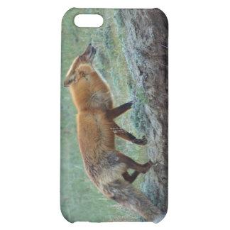 Hunting Yukon Red Fox Wildlife Device Case iPhone 5C Case