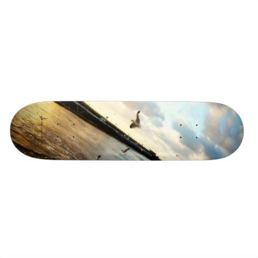 Huntington Beach seagulls Skate Board Deck