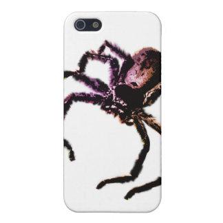 Huntsman Spider Cases For iPhone 5