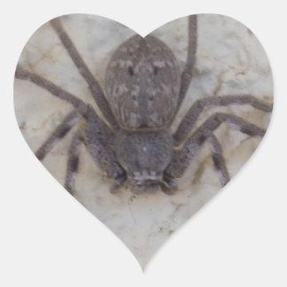 Huntsman_Spider,_Cool_Sticker. Heart Sticker