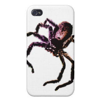 Huntsman Spider iPhone 4 Cover