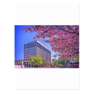 Huntsville Courthouse Postcard