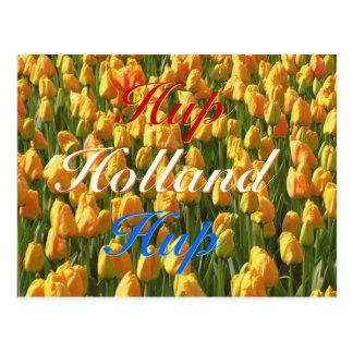 Hup tulipanes anaranjados azules blancos rojos de  postales