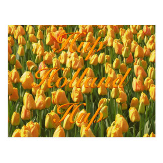 Hup tulipanes anaranjados de Holanda Hup Postales