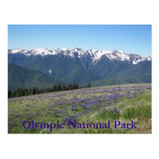 Huracán Ridge, foto olímpica del parque nacional Tarjetas Postales