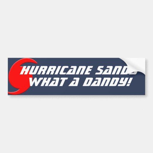 ¡Huracán Sandy - qué un chulo! Pegatina De Parachoque
