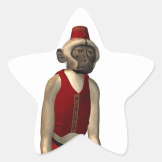 Hurdy Gurdy 3D Music Monkey 11 Star Sticker