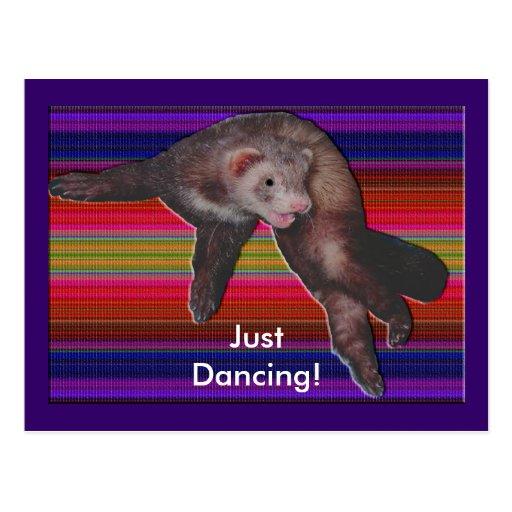 Hurón del baile postales