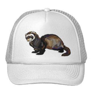 hurón gorra