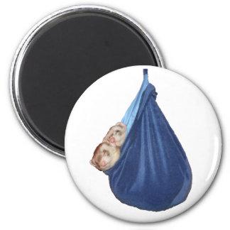 Hurónes en un imán del saco de dormir
