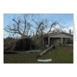 Hurricane Charley Aftermath, August 2004 Greeting Cards