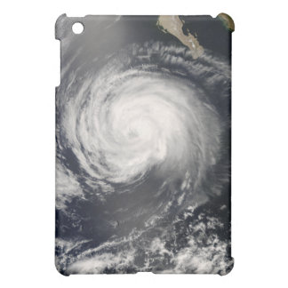 Hurricane Fausto iPad Mini Cover