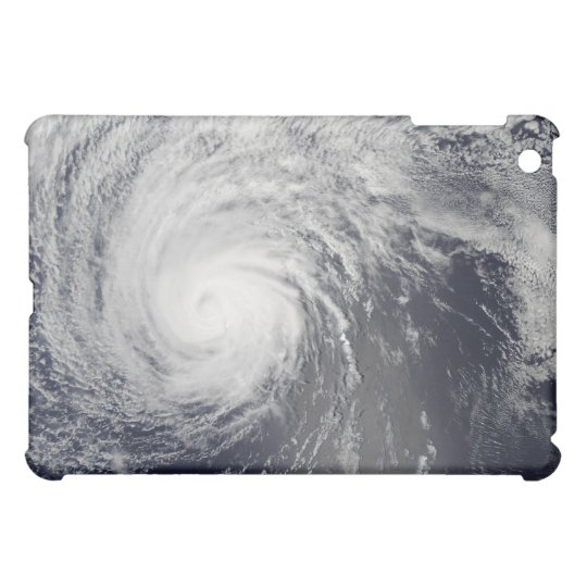 Hurricane Felicia iPad Mini Cases