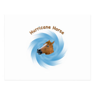 Hurricane Horse Postcard