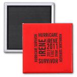 Hurricane Irene Survivor Flag Magnet 5