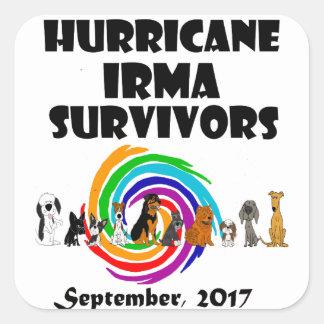 Hurricane Irma Dog Survivors 2017 Art Square Sticker