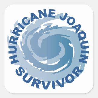 Hurricane Joaquin Survivor Square Sticker