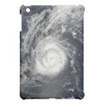 Hurricane Julia iPad Mini Case