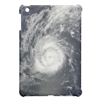Hurricane Julia iPad Mini Cover