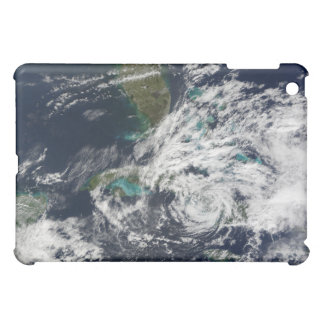 Hurricane Paloma 3 iPad Mini Cover