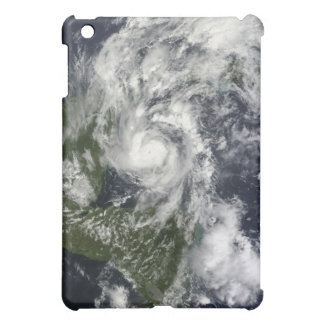 Hurricane Paula iPad Mini Cover