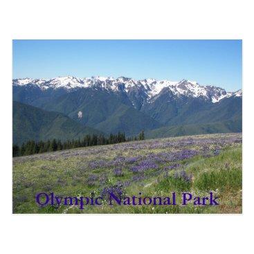 Christmas Themed Hurricane Ridge, Olympic National Park Photo Postcard