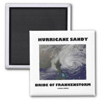 Hurricane Sandy Bride Of Frankenstorm 2 Inch Square Magnet