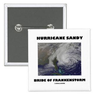 Hurricane Sandy Bride Of Frankenstorm Pins
