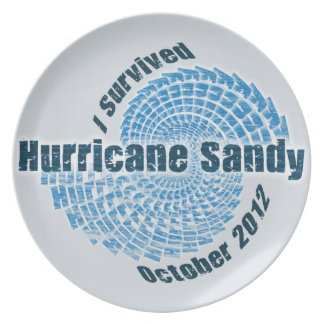 Hurricane Sandy Plate