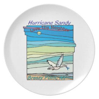 Hurricane Sandy Relief Breezy Point NY Plates