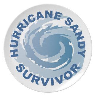 Hurricane Sandy Survivor 2012 Dinner Plate