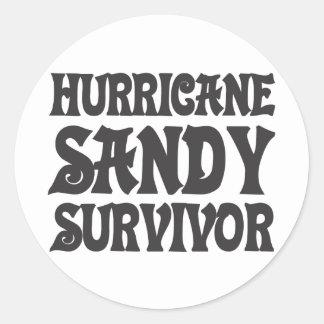 Hurricane Sandy Survivor. Classic Round Sticker