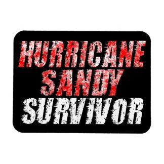 Hurricane Sandy Survivor Distressed Fridge Magnet