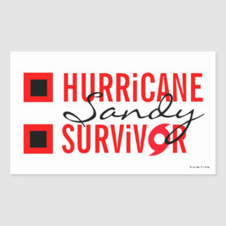 Hurricane Sandy Survivor Sticker 3