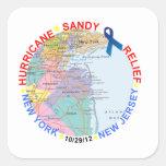 Hurricane Support Merchandise Square Sticker