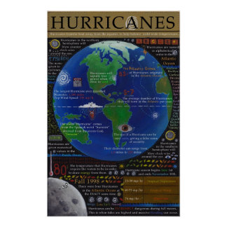 Hurricanes Poster