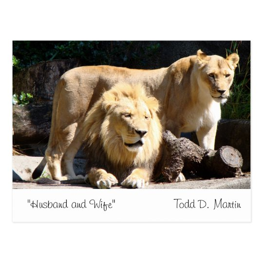 """""""Husband and Wife"""" By: Todd D. Martin Postcard"""