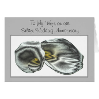 Husband and Wife Silver Anniversary Greeting Card