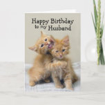 """Husband Happy Birthday Orange Kittens Card<br><div class=""""desc"""">An orange kitten kisses and hugs another kitten.  This adorable pair of hugging orange kittens creates a charming greeting for a birthday card for a loved one. You can personalize this for another occasion or relationship such as """"Happy Anniversary"""" and girlfriend,  wife or boyfriend.</div>"""