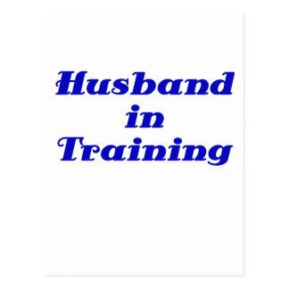 Husband in Training Postcard