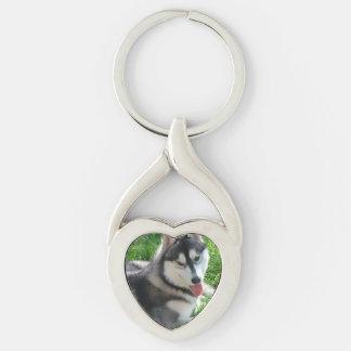 husky-3 keychain