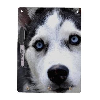 husky-54 dry erase white board