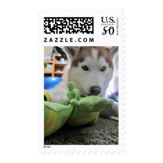 husky and the green lizard postage