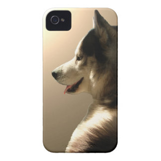 Husky Blackberry Case Sled Dog Lover Gifts