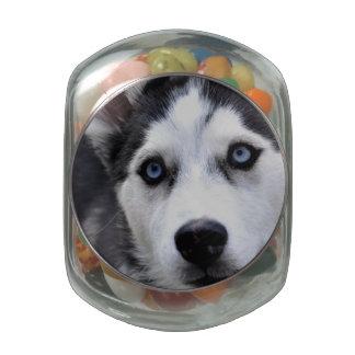 Husky Glass Candy Jar